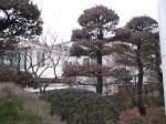 2017타경11002 - 서울중앙 [주택] 서울특별시 종로구 청운동 53-57 - 부동산미래