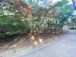 2020타경3042 - 서울동부 [임야] 서울특별시 광진구 광장동 378-17 - 부동산미래