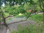 2019타경104389 - 서울북부 [임야] 서울특별시 성북구 성북동 224-30 - 저당권거래소 KMEX