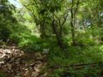 2018타경12547 - 의정부지법 [잡종지] 경기도 가평군 가평읍 승안리 347 - 부동산미래