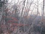 2018타경24748 - 의정부지법 [임야] 경기도 남양주시 수동면 내방리 산32-148 - 부동산미래