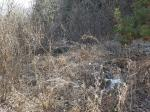 2019타경71673 - 의정부지법 [임야] 경기도 가평군 청평면 청평리 산32 - ㈜원앤원플러스인베스트