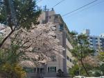 2020타경51722 - 서울서부 [아파트] 서울특별시 은평구 통일로 586-26, 1동 6층603호 - 믿음경매