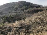 2019타경4993 - 인천지법 [임야] 인천광역시 강화군 삼산면 석모리 979-6 - 부동산미래