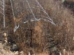 2021타경501428 - 인천지법 [임야] 인천광역시 강화군 서도면 볼음도리 산28 - 행정과 부동산