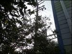 2019타경3177 - 부천지원 [공장] 경기도 김포시 통진면 마송리 292-1 - (주)원앤원플러스부동산중개법인