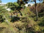 2018타경514377 - 수원지법 [답] 경기도 화성시 비봉면 양노리 218-6 - 부동산미래