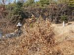 2018타경518065 - 수원지법 [임야] 경기도 용인시 처인구 남동 산19-3 - 부동산미래