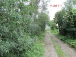 2019타경57492 - 성남지원 [임야] 경기도 성남시 수정구 상적동 211-16 - 드림경매