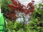 2019타경9895 - 평택지원 [공장] 경기도 평택시 청북읍 어연리 770-8 - 부동산미래