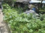 2019타경3994 - 춘천지법 [전] 강원도 홍천군 홍천읍 연봉리 260-38 - 부동산미래