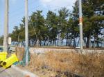 2019타경325 - 강릉지원 [임야] 강원도 강릉시 강동면 정동진리 438 - 부동산미래
