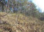 2019타경1850 - 속초지원 [임야] 강원도 양양군 현북면 잔교리 산79 - 부동산미래