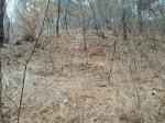 2019타경111790 - 대전지법 [전] 충청남도 금산군 금성면 의총리 365-3 - 부동산미래