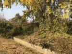2018타경12628 - 천안지원 [전] 충청남도 아산시 음봉면 신휴리 113-2 - 부동산미래