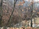 2019타경16009 - 천안지원 [임야] 충청남도 천안시 동남구 북면 사담리 412 - 믿음경매