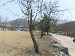 2019타경101365 - 천안지원 [대지] 충청남도 아산시 송악면 외암리 166-2 - 부동산미래