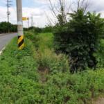 2019타경9286 - 대구지법 [과수원] 경상북도 경산시 진량읍 당곡리 40-2 - 부동산미래