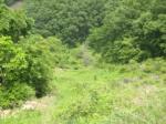 2020타경70781 - 상주지원 [과수원] 경상북도 문경시 산북면 종곡리 35-1 - 부동산미래
