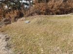 2019타경1430 - 의성지원 [전] 경상북도 의성군 비안면 용천리 182-1 - 부동산미래