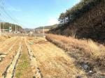 2019타경89 - 영덕지원 [전] 경상북도 영덕군 영덕읍 화수리 380 - 파란법원경매