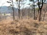 2019타경256 - 영덕지원 [답] 경상북도 영덕군 영덕읍 매정리 58 - 부동산미래
