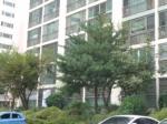 2018타경11783 - 창원지법 [아파트] 경상남도 창원시 성산구 원이대로 774, 203동 1층118호 (상남동,성원아파트) - 부동산미래