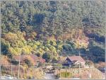 2017타경10291 - 통영지원 [전] 경상남도 거제시 일운면 와현리 481 - 부동산미래