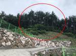 2018타경5746 - 통영지원 [임야] 경상남도 거제시 연초면 연사리 산122-10 - 부동산미래