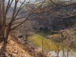 2017타경3623 - 밀양지원 [임야] 경상남도 밀양시 부북면 오례리 384-11 - 부동산미래