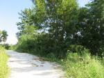 2019타경1706 - 밀양지원 [묘지] 경상남도 밀양시 초동면 명성리 290 - 부동산미래