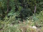 2018타경1849 - 거창지원 [임야] 경상남도 합천군 가야면 가천리 산59 - 부동산미래