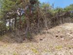 2019타경430 - 거창지원 [임야] 경상남도 합천군 청덕면 두곡리 산40 - 대한법률부동산연구소