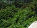 2017타경65174 - 광주지법 [답] 전라남도 곡성군 죽곡면 봉정리 73 - 부동산미래