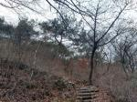 2020타경2456 - 광주지법 [임야] 광주광역시 서구 풍암동 산38 - 부동산미래
