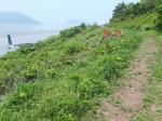 2020타경5707 - 광주지법 [임야] 전라남도 영광군 홍농읍 칠곡리 산161-7 - 부동산미래