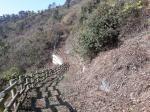 2020타경74857 - 광주지법 [전] 전라남도 영광군 낙월면 하낙월리 산144 - 부동산미래