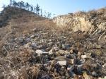 2018타경8706 - 목포지원 [임야] 전라남도 신안군 증도면 우전리 산75 - 부동산미래