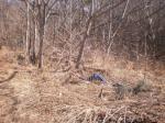 2017타경701 - 순천지원 [전] 전라남도 광양시 옥룡면 동곡리 987 - 파란법원경매