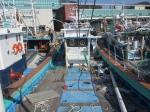 2018타경10880 - 순천지원 [선박]       여수시 국동항 - 부동산미래