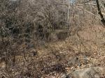 2019타경468 - 전주지법 [임야] 전라북도 임실군 임실읍 현곡리 1041 - 부동산미래