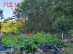 2019타경36542 - 전주지법 [대지] 전라북도 무주군 적상면 삼유리 172 - 드림경매