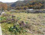 2019타경4404 - 정읍지원 [전] 전라북도 부안군 변산면 도청리 419-1 - 부동산미래