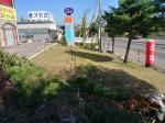 2019타경55992 - 안산지원 [전] 경기도 시흥시 신천동 595-7 - 저당권거래소 KMEX